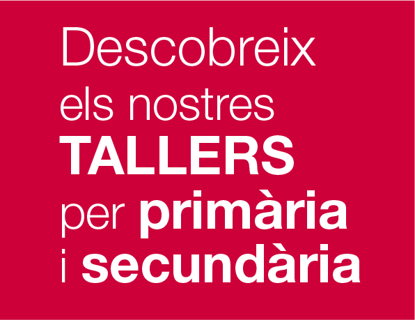 Tallers Museu